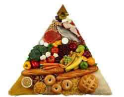 67080 - Alimentation - Alimentation