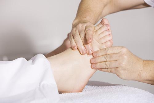 Les muscles du pied