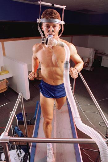 test-efforts-muscles-L