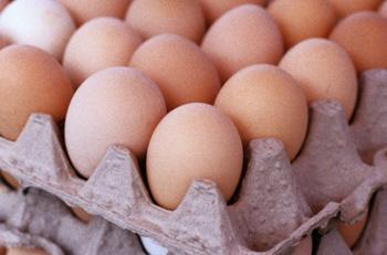 Suppléments Alimentaires. aliments et supplements