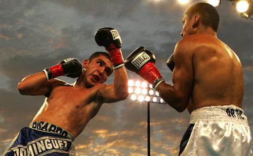 la boxe professionnelle